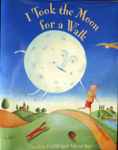 I-took-the-moon-for-a-walk