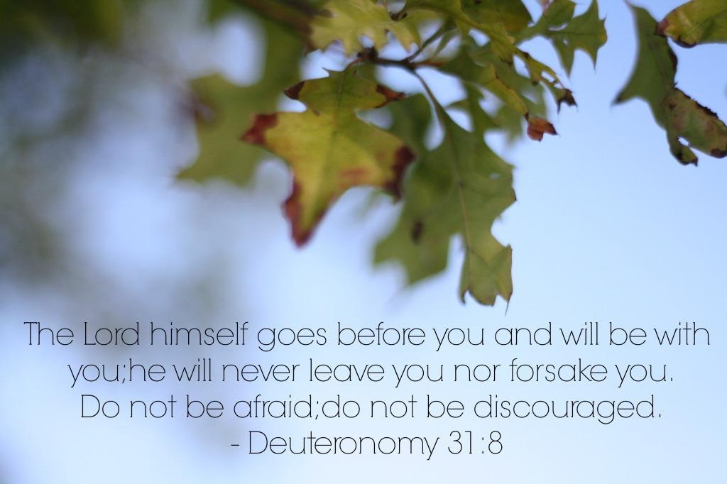 Deuteronomy318