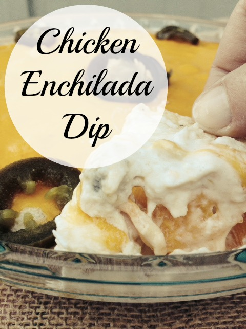 Chicken Enchilada Dip - Moms Without Answers