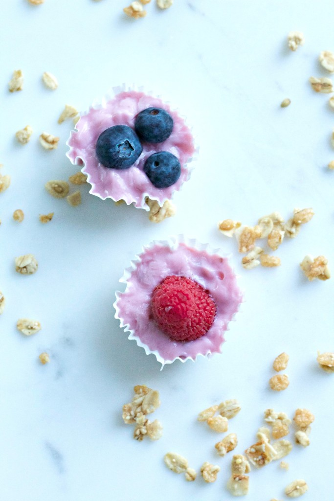 yogurtbites