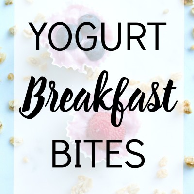 Yogurt Breakfast Bites