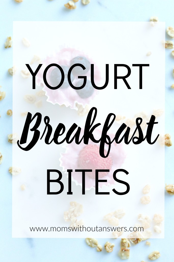 yogurtbreakfastbites