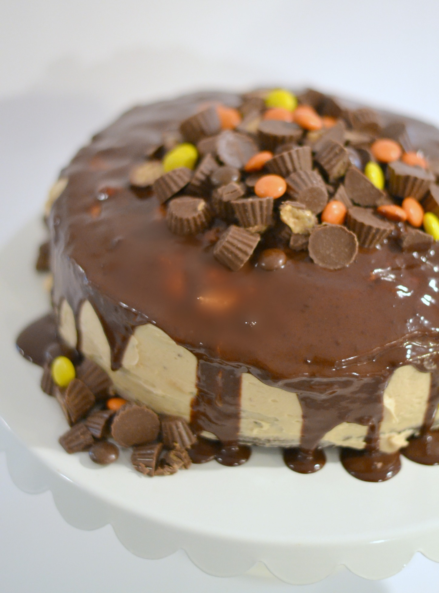 Inside Out Reese's Dirt Cake 3