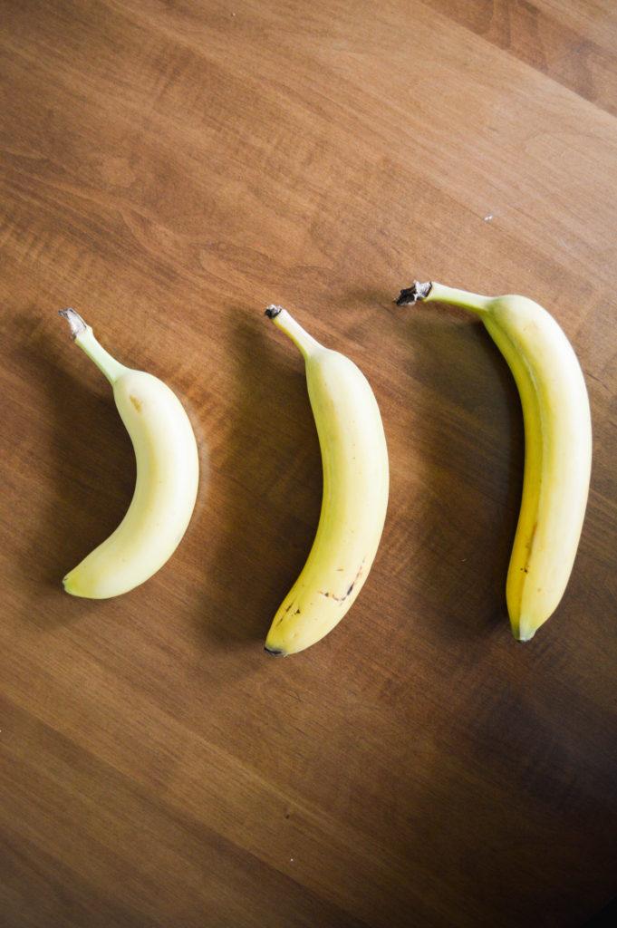MWOA_Educational Food (4 of 6)
