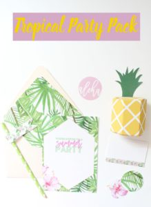Tropical Party Pack- this DIY party pack is perfect for any occasion.