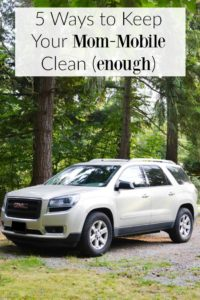 5 Ways to Keep Your Mom-Mobile Clean (enough). Great tips for keeping your car organized and clean.