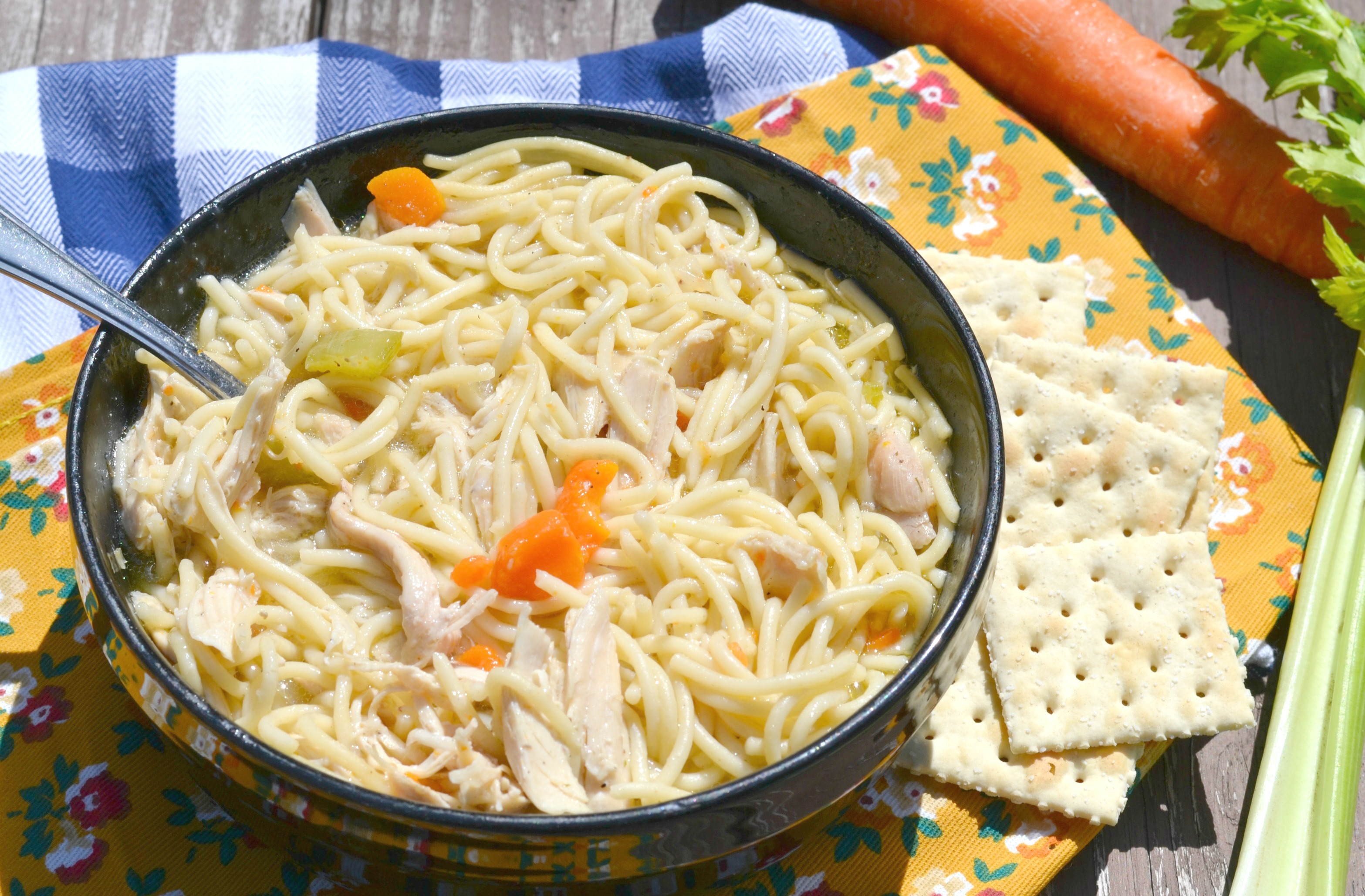 the-worlds-best-chicken-noodle-soup-3