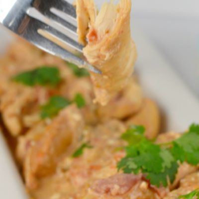 Low Carb Cheesy Crockpot Salsa Chicken